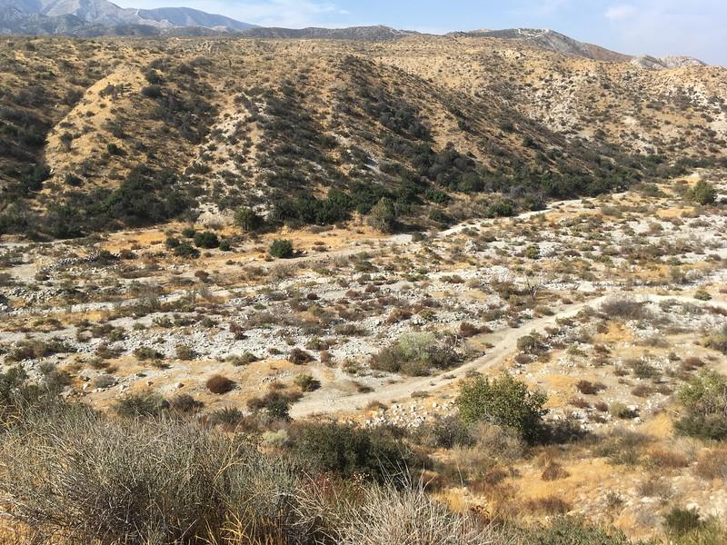 Mesa View # 24