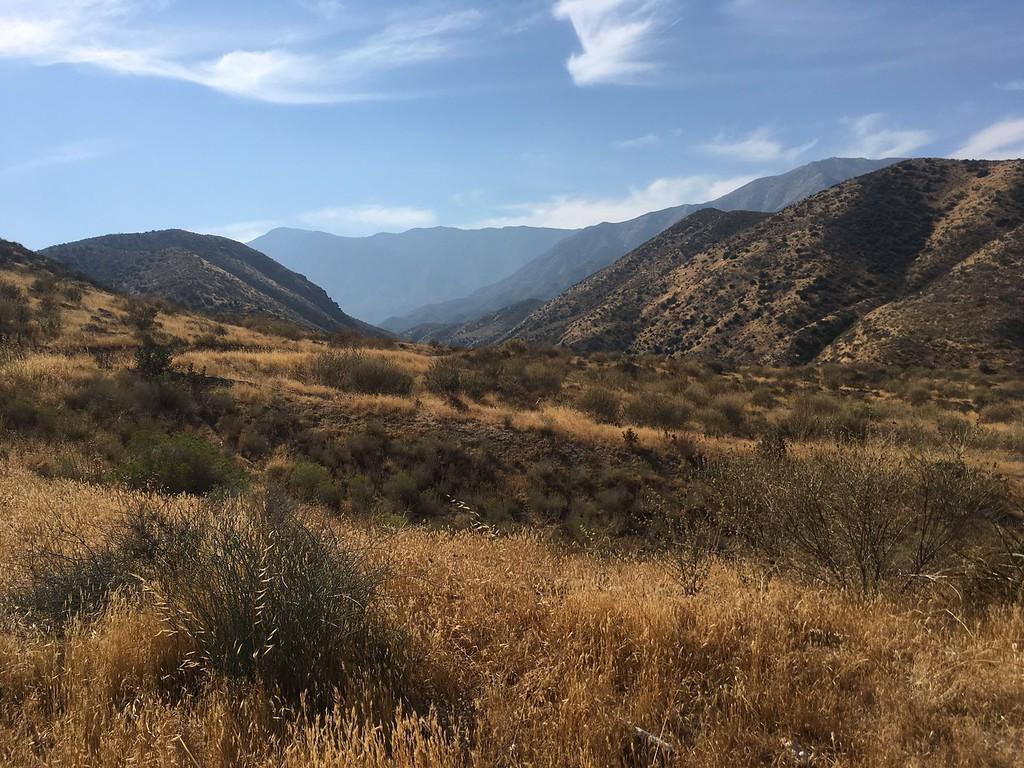 Mesa View # 29