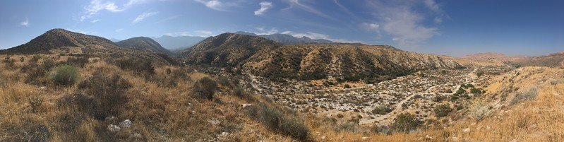 Mesa View # 14