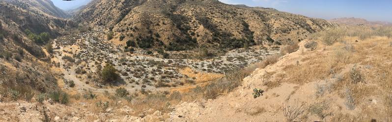 Mesa View # 25