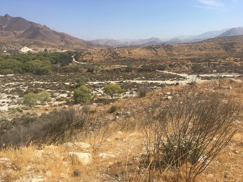 Mesa View # 5