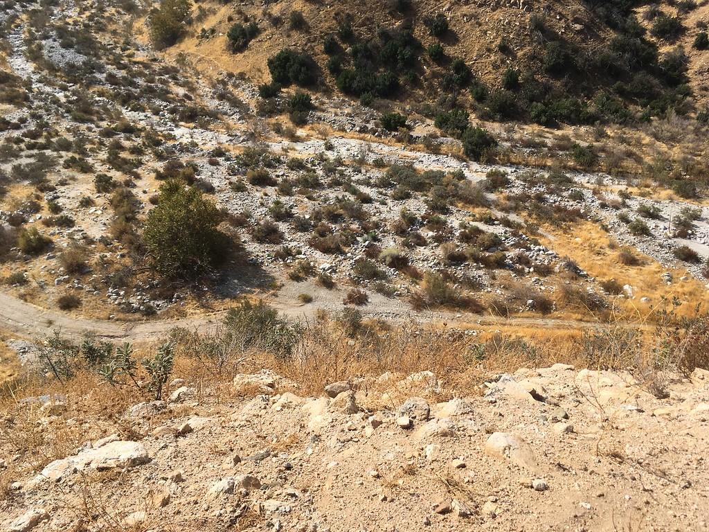 Mesa View # 22