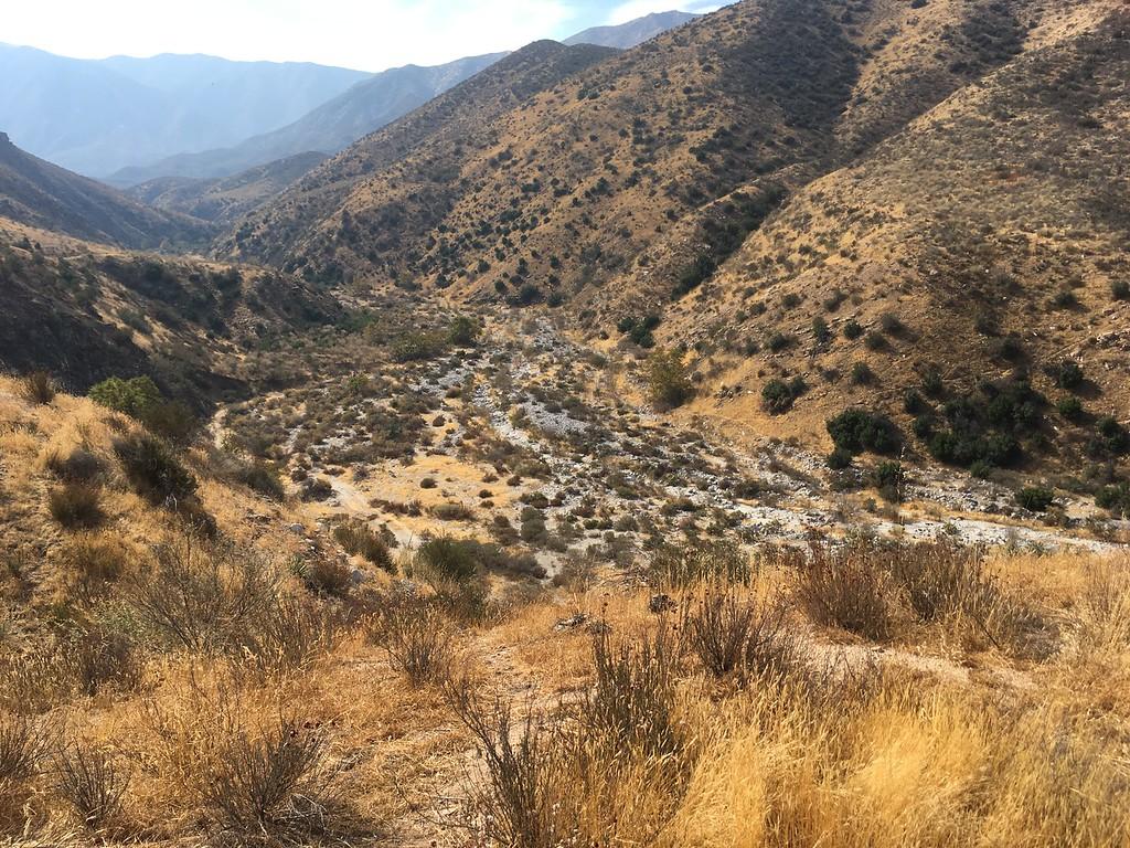 Mesa View # 18