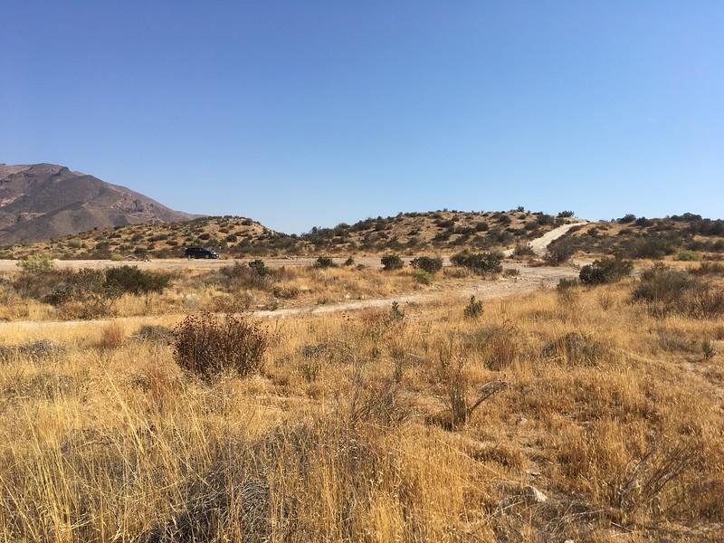 Mesa View # 38