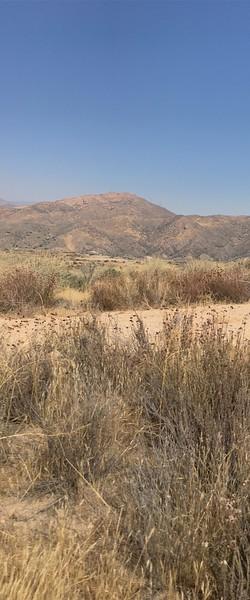 Mesa View # 37