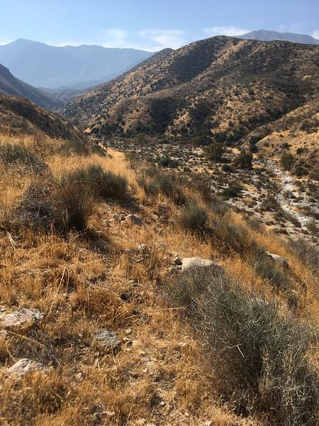 Mesa View # 30