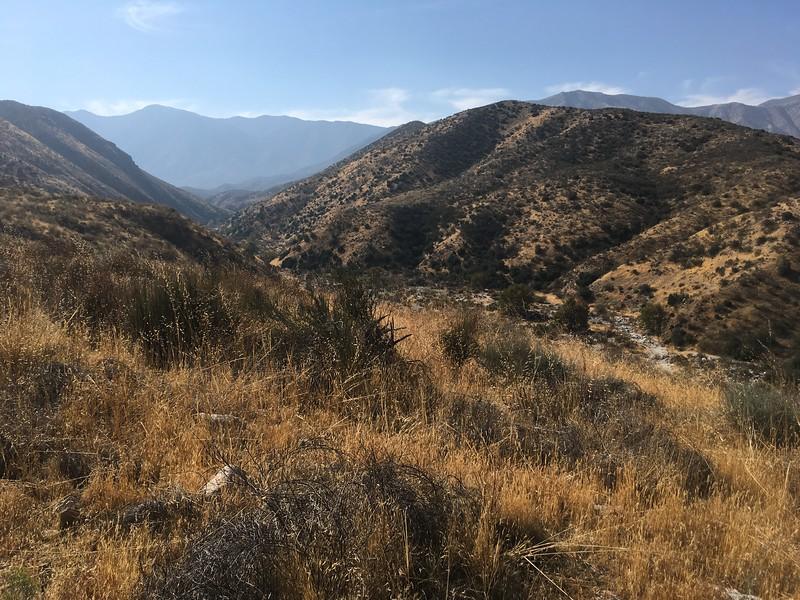 Mesa View # 32