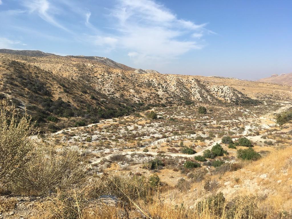 Mesa View # 27
