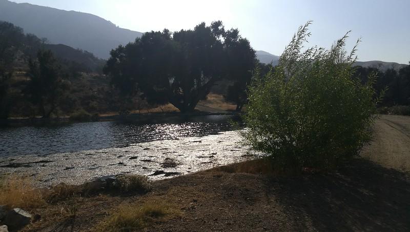 Landscape View # 19