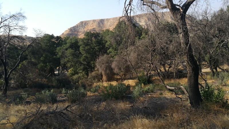 Landscape View # 30