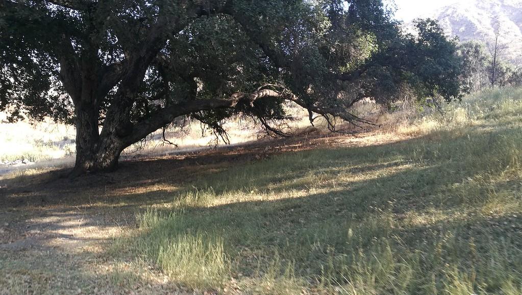 Landscape View # 47