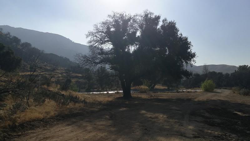 Landscape View # 17