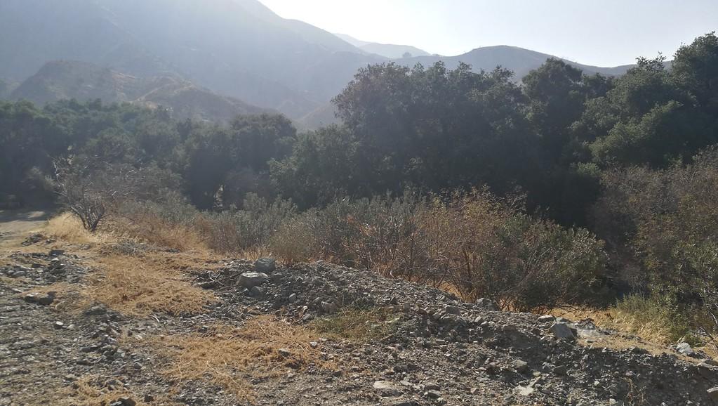 Landscape View # 42