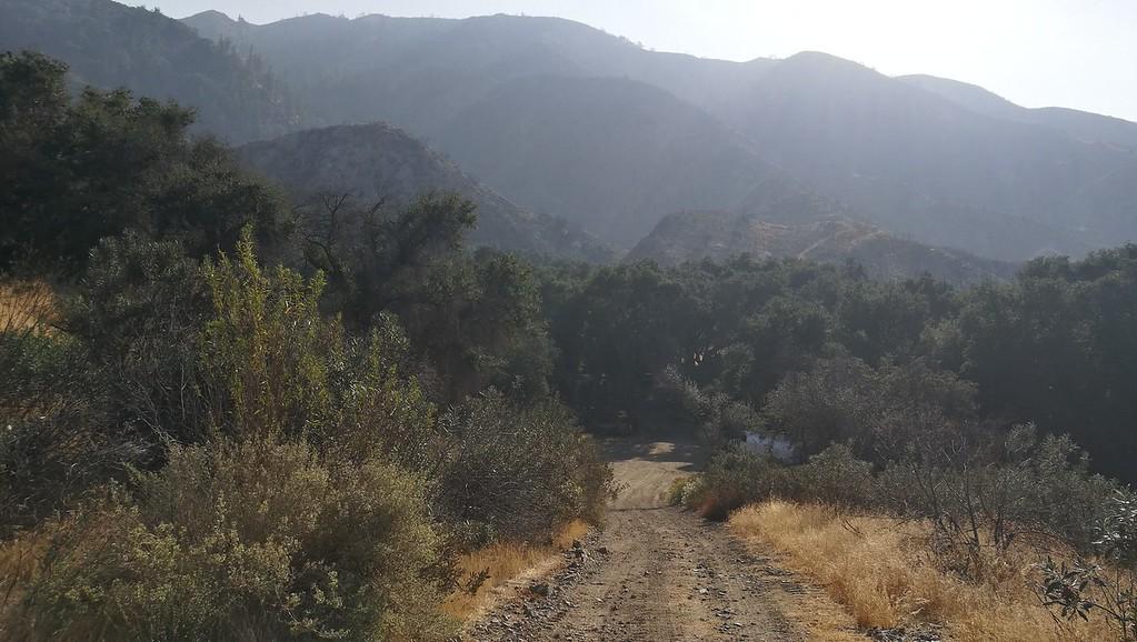 Landscape View # 39
