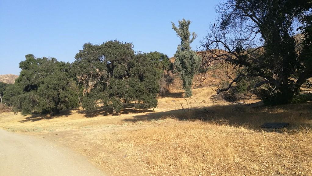 Landscape View # 48