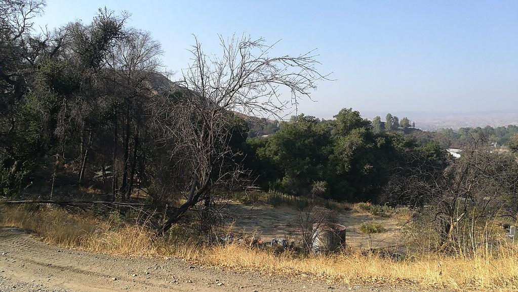 Landscape View # 44