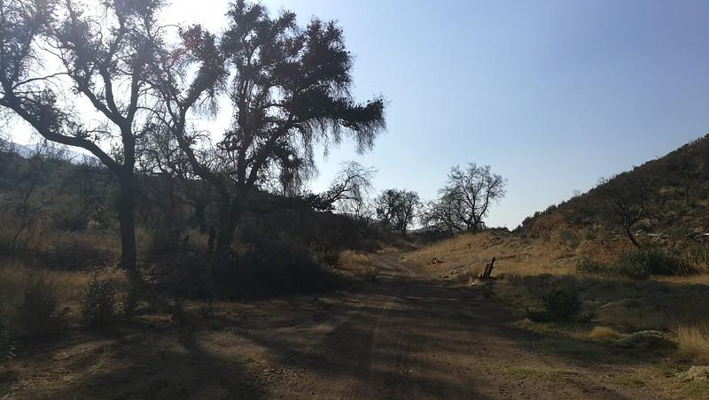 Landscape View # 14