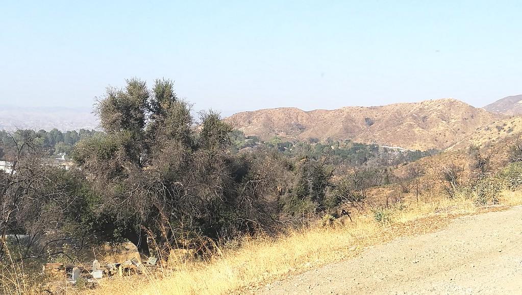 Landscape View # 43