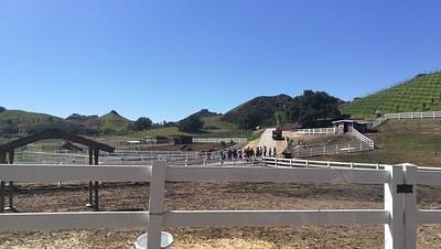 Saddle rock ranch