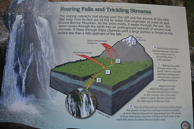 Roaring Falls and Trickling Streams
