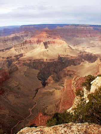 Grand Canyon (South Rim) '08