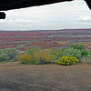 09/23/12: This is a view taken from the covered patio of the Painted Desert Inn located at Kachina Point. The inn is a national historic landmark.