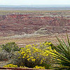 09/23/12: A view from Kachina Point looking east across the Painted Desert.