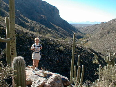Sabino Canyon '04