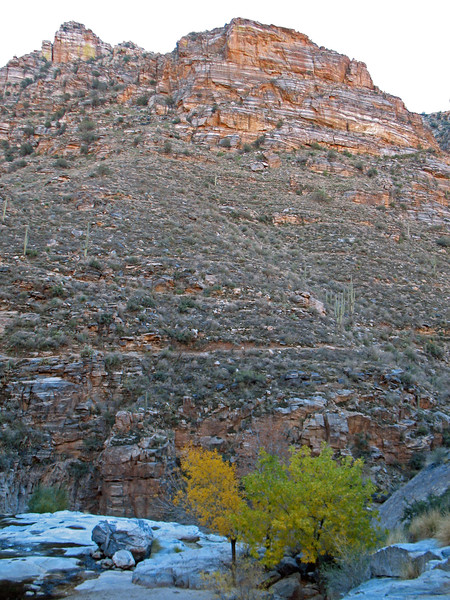 This is a view taken from Seven Falls overlooking the south wall of Bear Canyon. Midway in the photo you can see the Seven Falls Trail, and forked above it is the upper section of the Bear Canyon Trail.