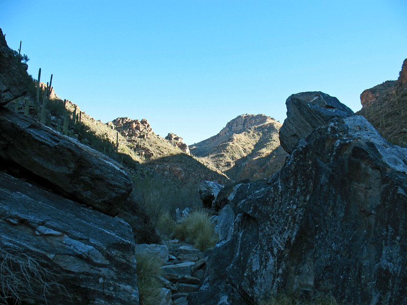 The Bear Canyon Trail is rocky terrain which meanders through a beautiful riparian habitat.