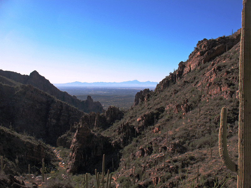 There are great views down-canyon from this area facing south.