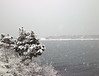CA CP snow CF007854