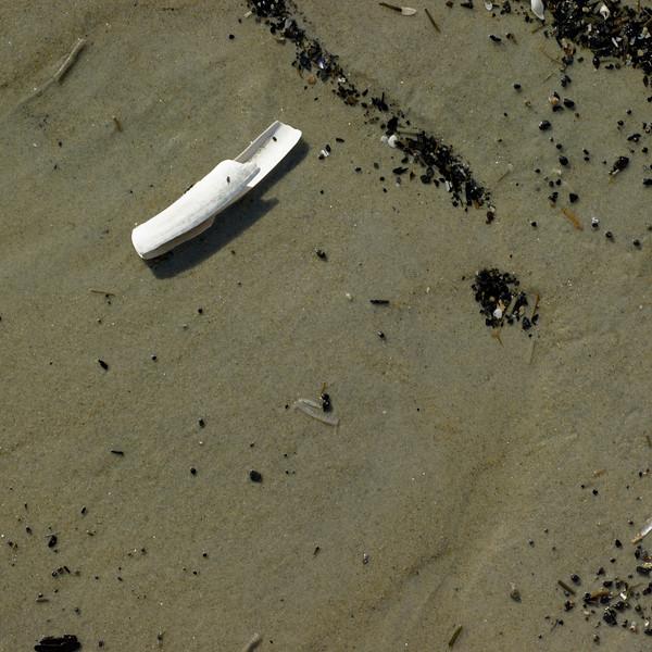 CA Crane Beach 4 17 9