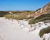 Dunes at Crane Beach
