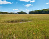 Rough Meadows Wildlife Sanctuary