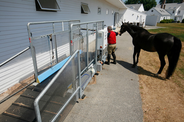 Gloucester native Jeff Papows, Chairman of the Board of the Jumper Classic, leads Rocket, a German Holsteiner, out to the treadmill to get some exercise at Silver Oak Equestrian Center at  Hampton Falls, N.H. <br /> Amy Sweeney/Staff photo