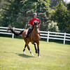 Gloucester native Jeff Papows, Chairman of the Board Fidelity Investments Jumper Classic, takes Tenacious for a ride at the  Silver Oak Equestrian Center at  Hampton Falls, N.H.  <br /> Amy Sweeney/Staff photo