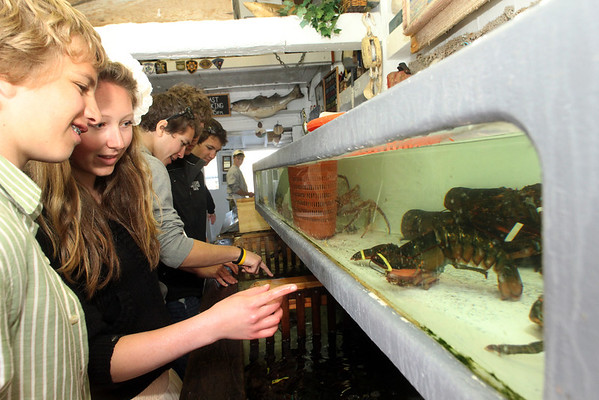 ALLEGRA BOVERMAN/Cape Ann Magazine Checking out the tanks full of lobsters, crabs and shellfish at Roy Moore Lobster Shack are, from left: Ethan Andersen, Emily Arntsen, Quinn Andersen, Cameron Shaw and Luke Andersen.