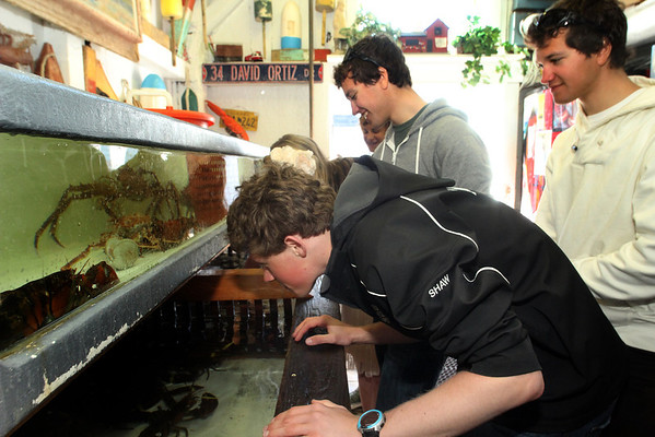 ALLEGRA BOVERMAN/Cape Ann Magazine Checking out the tanks full of lobsters, crabs and shellfish at Roy Moore Lobster Shack in Rockport. From left are Cameron Shaw, Quinn Andersen, his twin brother Luke Andersen, and in back, behind them, are Emily Arntsen and Ethan Andersen.