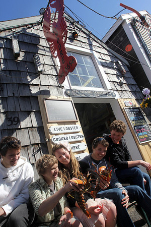 ALLEGRA BOVERMAN/Cape Ann Magazine At Roy Moore Lobster Shack in Bearskin Neck, Rockport, with some live lobsters. From left are: Luke Andersen, Ethan Andersen, Emily Arntsen, Quinn Andersen and Cameron Shaw.