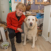 Desi Smith/Cape Ann<br /> Meg Lustig, owner of the Canterbury Hill Studio & Gallery in Rockport, adopted Izzy, her 4-year-old, 120-pound Great Pyrenees-retriever mix from a rescue.