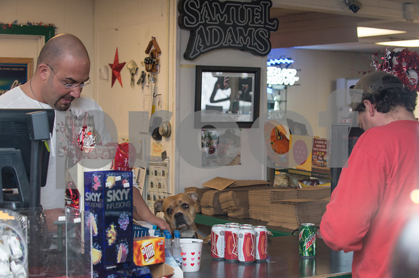 Desi Smith/Cape Ann<br /> Mumma, a 3-year-old American Pit Bull Terrier, looks up at her owner Vinnie Marano, left, of Essex Wine & Spirits on Main Street in Essex as he rings in a customer.