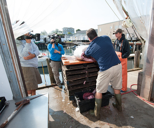 """A """"Wicked Tuna"""" camera crew films a Compass Seafood employee cleaning a bluefin tuna landed by Capt. Dave Carraro, right. Photo by Desi Smith."""