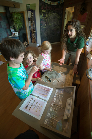 DESI SMITH/Staff photo.  From left to right, Henry Chadbourne 7, Caton Andrade 4 1/2 and Cecilia Chadbourne 5, try to identifiy different bird bones with help from Cape Ann Consevation intern Nicole Pyser, at the Discovery Center at Ravenswood Park.