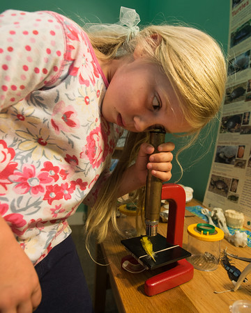 DESI SMITH/Staff photo.  Cecilia Chadbourne 5, of Rockport gets a close up of a birds feather with a micoscope while at  Discovery Center at Ravenswood Park.