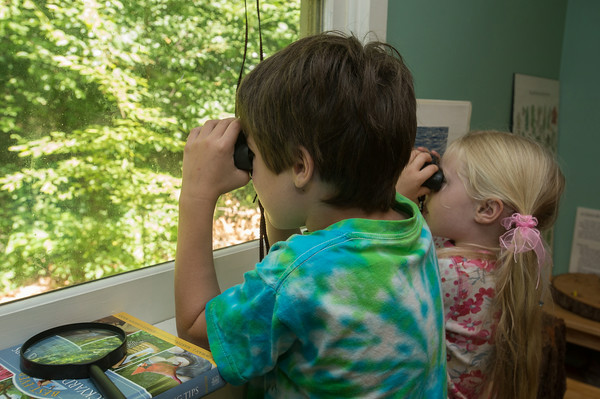DESI SMITH/Staff photo<br /> Henry Chadbourne, 7, and sister Cecilia 5, of Rockport, use binoculars to look though a Discovery Center window for some animals in the Ravenswood Park woods in Gloucester.