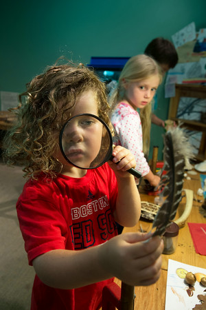 DESI SMITH/Staff photo.  Caton Andrade 4 1/2 of Gloucester gets a closeup of a bird feather with a magnifying glass while at the Discovery Center at Ravenswood Park in Gloucester.