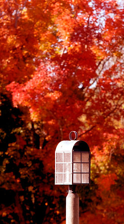 Jim Vaiknoras/Cape Ann Magazine.One of the lanterns at the Cox Reservation is surrounded by the red fall leaves of swamp maples.