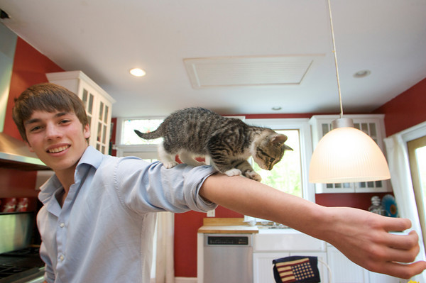 Shaffy Roell, 16, a junior at Rockport High School lets their new kitten Kiki walk down his arm in the kitchen of his Rockport home. Photo by Mary Muckenhoupt