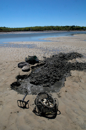 Clam flats on Farm Creek in Gloucester. The tools, are a sled, basket and clamming fork.<br /> Photo by Desi Smith.